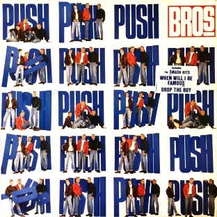 Bros ‎- Push (LP) (EX-/G-VG)
